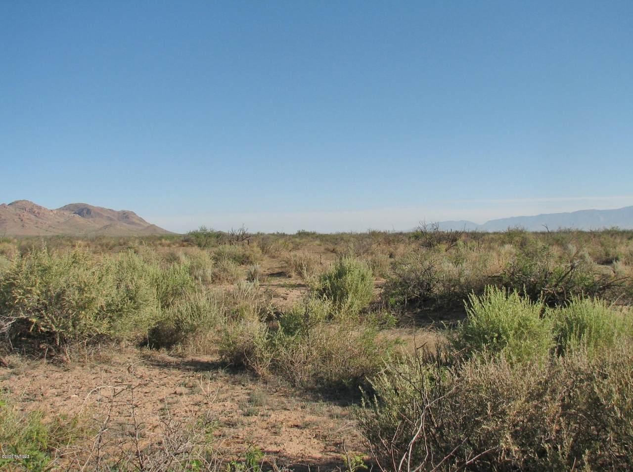 563.4 Acre Marguerite Road - Photo 1