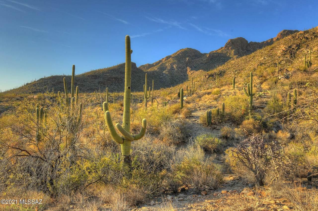 1649 Barrell Cactus Court - Photo 1