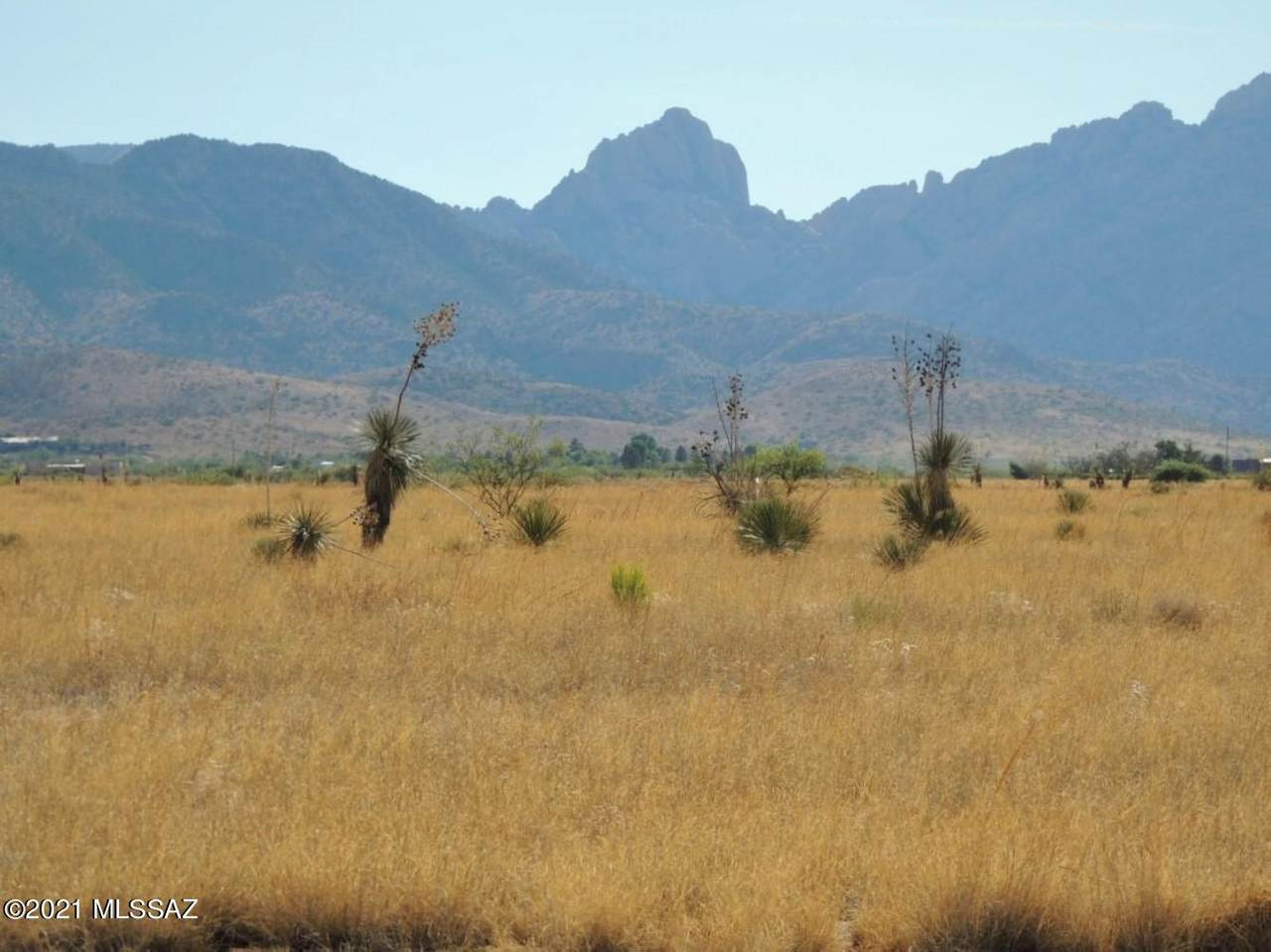13.43 Acre Windsong Ln W Of Willcox Rd - Photo 1