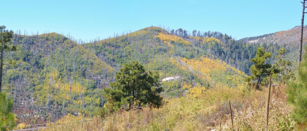 12717 Upper Loma Linda Road - Photo 1
