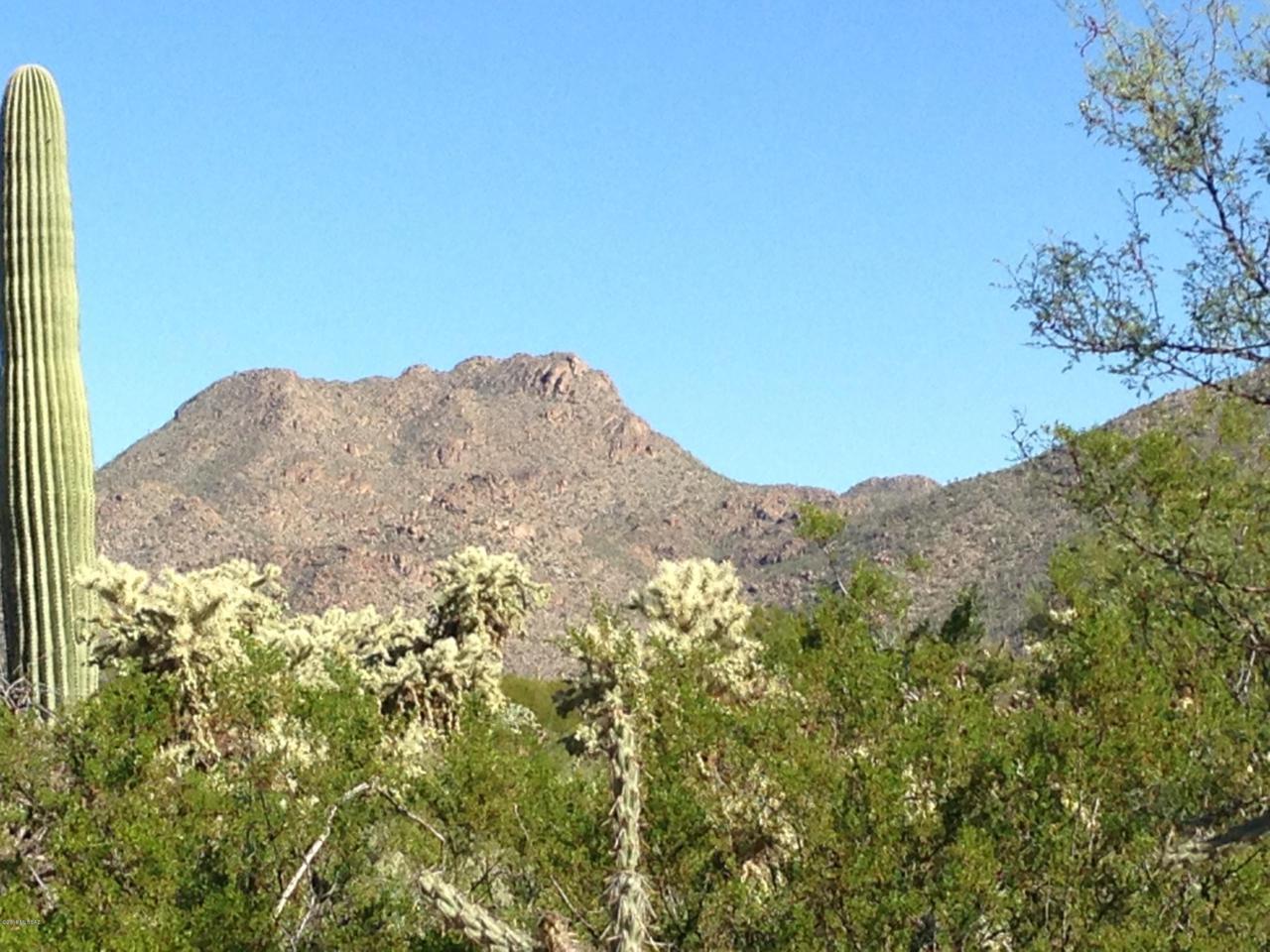 12765 Sonoran Preserve Boulevard - Photo 1