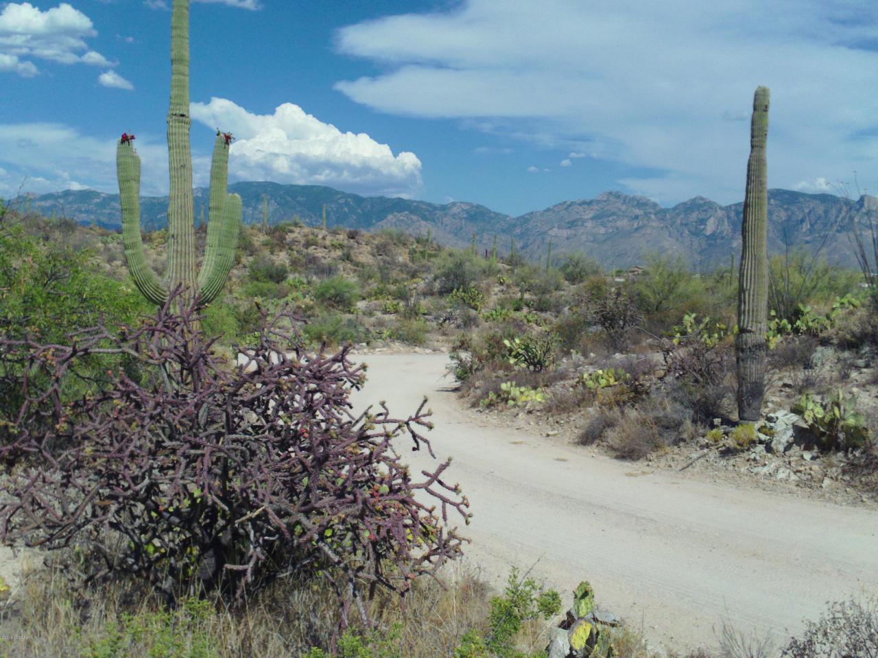 Gibson Trail - Photo 1