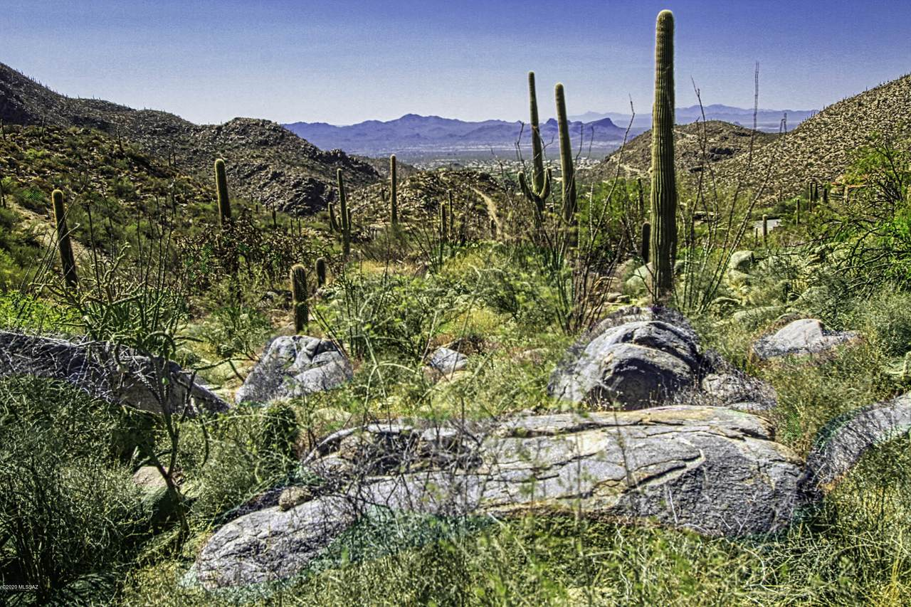 4320 Cush Canyon Loop - Photo 1