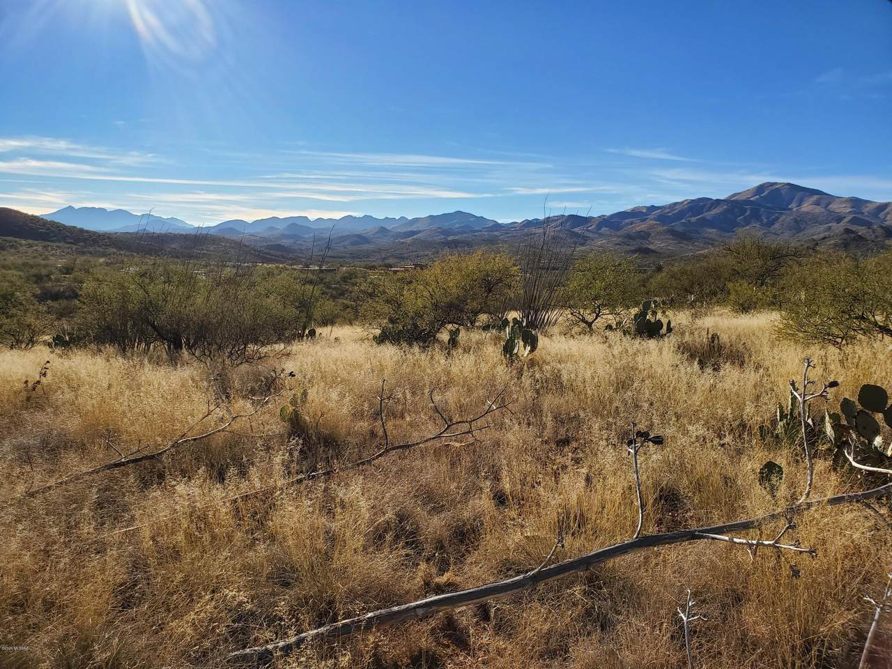 Mesquite Mesa Trail - Photo 1