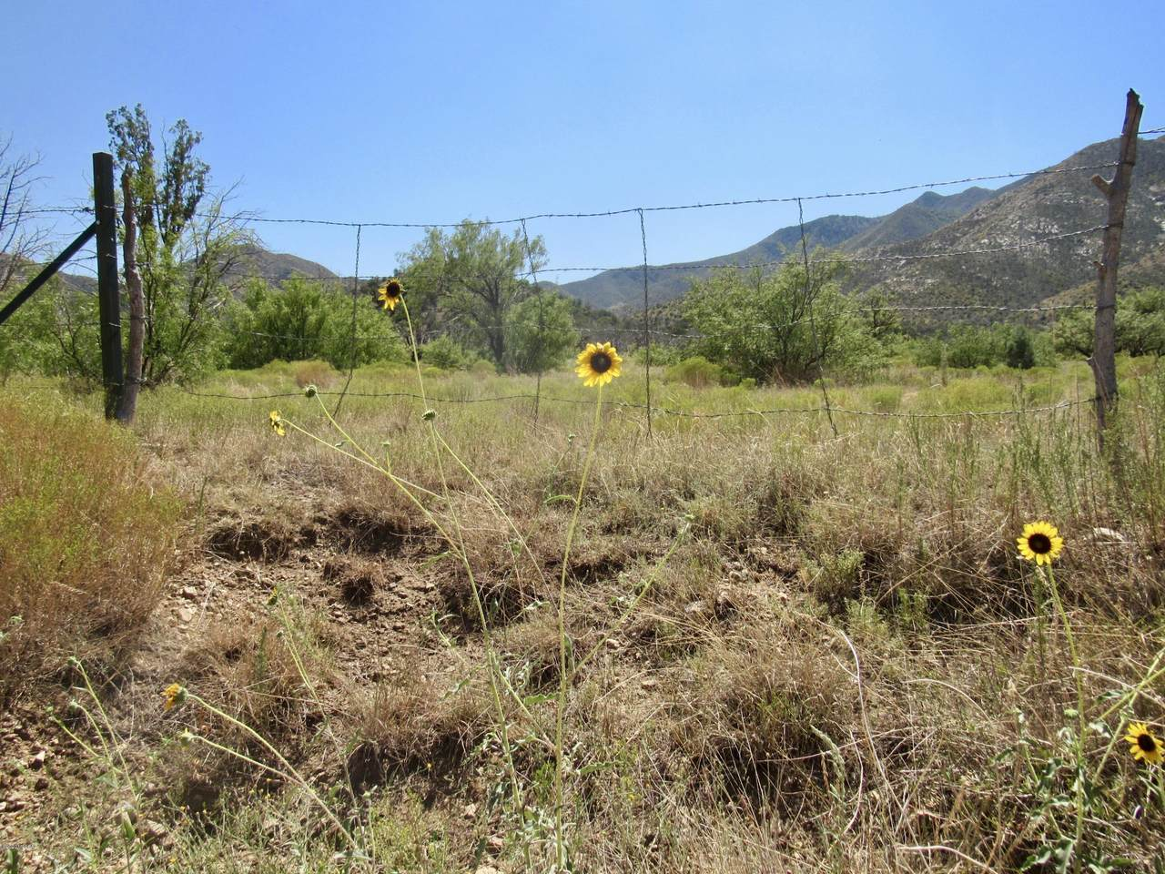 25 acres Hilltop Road - Photo 1
