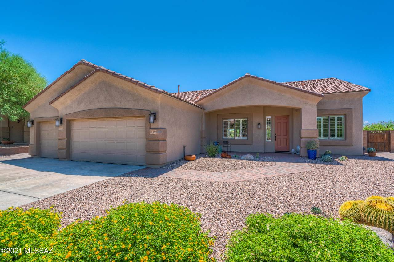 12950 Ocotillo Point Place - Photo 1