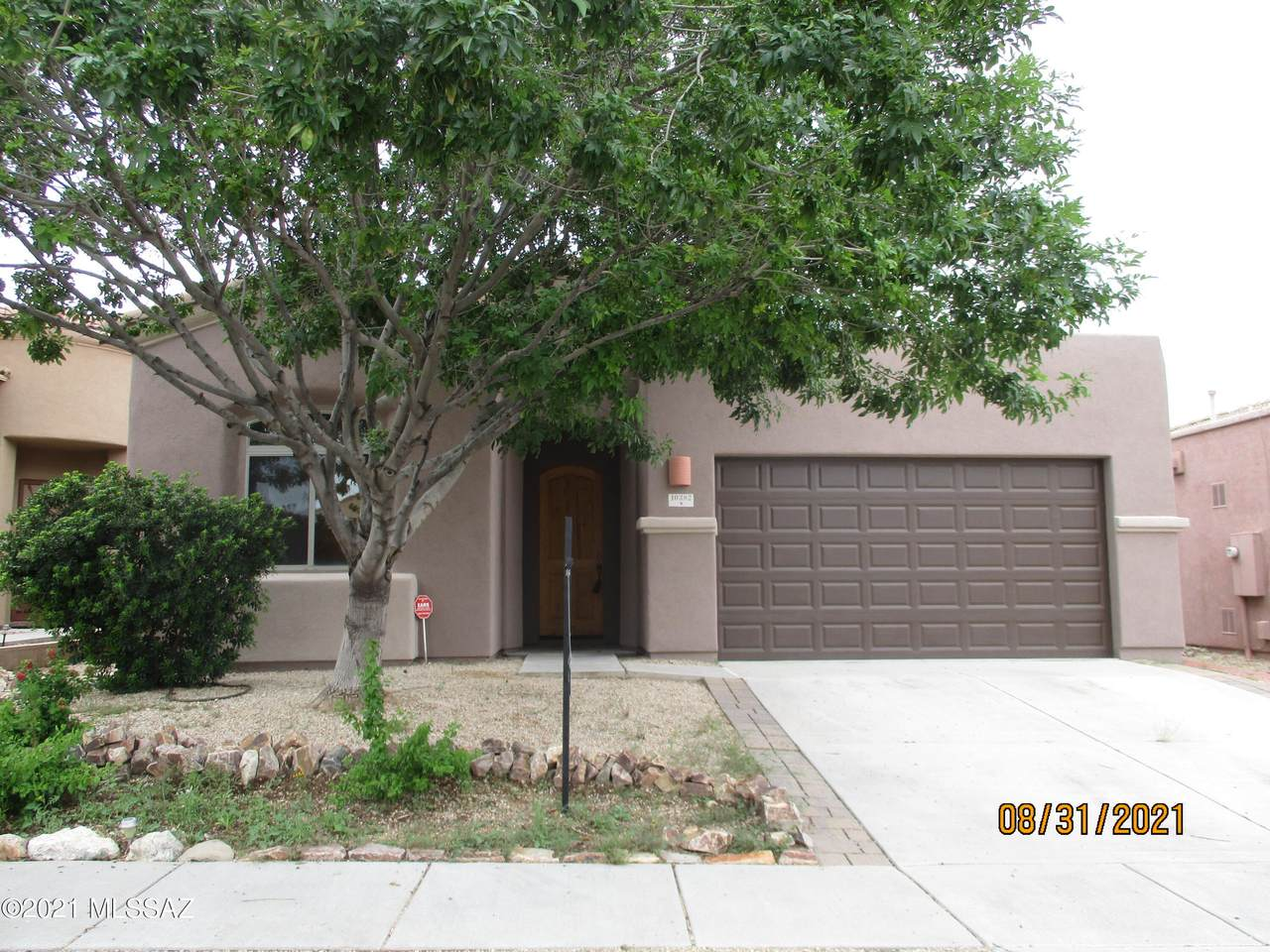 10382 Painted Mare Drive - Photo 1