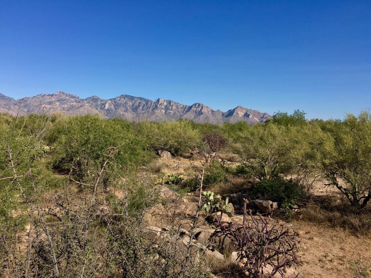 946 Tortolita Mountain Circle - Photo 1