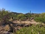 946 Tortolita Mountain Circle - Photo 3