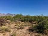 946 Tortolita Mountain Circle - Photo 5