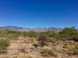 946 Tortolita Mountain Circle - Photo 6