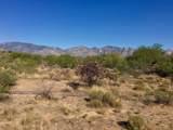 946 Tortolita Mountain Circle - Photo 7