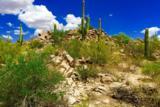 1305 Tortolita Mountain Circle - Photo 8