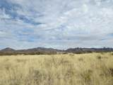 36.17 ac Horse Ranch Road - Photo 4