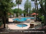 6445 Tierra De Las Catalinas - Photo 13