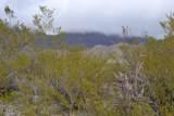 4580 Bear Canyon Road - Photo 10