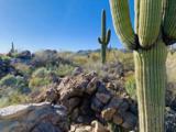 14471 Giant Saguaro Place - Photo 2