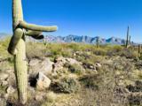 14471 Giant Saguaro Place - Photo 3