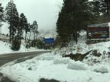 12959 Guthrie Road - Photo 40