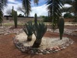 9221 Palm Tree Drive - Photo 32