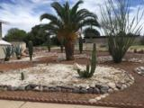 9221 Palm Tree Drive - Photo 34