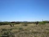 3.59 ac Deer Run Road - Photo 10