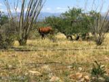 11120 Camino Aurelia - Photo 38