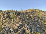 1197 Tortolita Mountain Circle - Photo 16
