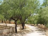 11815 Tanque Verde Road - Photo 7