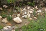 11051 Carter Canyon Road - Photo 1