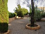 923 Saguaro Drive - Photo 30