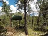 13429 Saulsberry Trail - Photo 16