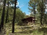 13429 Saulsberry Trail - Photo 17