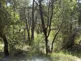 13429 Saulsberry Trail - Photo 19