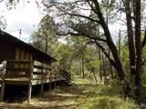 13429 Saulsberry Trail - Photo 2