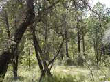 13429 Saulsberry Trail - Photo 20