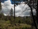 13429 Saulsberry Trail - Photo 21