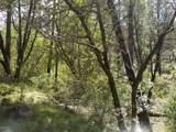 13429 Saulsberry Trail - Photo 23