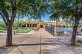 2192 Desert Squirrel Court - Photo 44