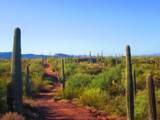 41080 Crystal Visions Road - Photo 21