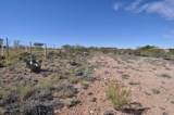 12822 Red Horizon Trail - Photo 4