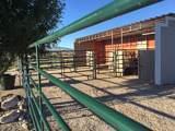 24870 Boer Goat Place - Photo 20