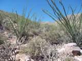 4255 Cush Canyon Loop - Photo 11