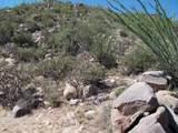 4255 Cush Canyon Loop - Photo 12