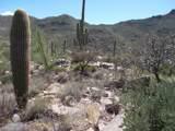 4255 Cush Canyon Loop - Photo 14