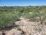 14529 Desert Sage Lane - Photo 4