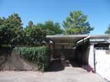 3933 Queen Palm Drive - Photo 18