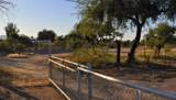 1569 Mohave Road - Photo 7