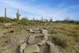 1787 Tortolita Mountain Circle - Photo 5