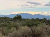 10 Acres Bird Of Paradise Trail - Photo 2
